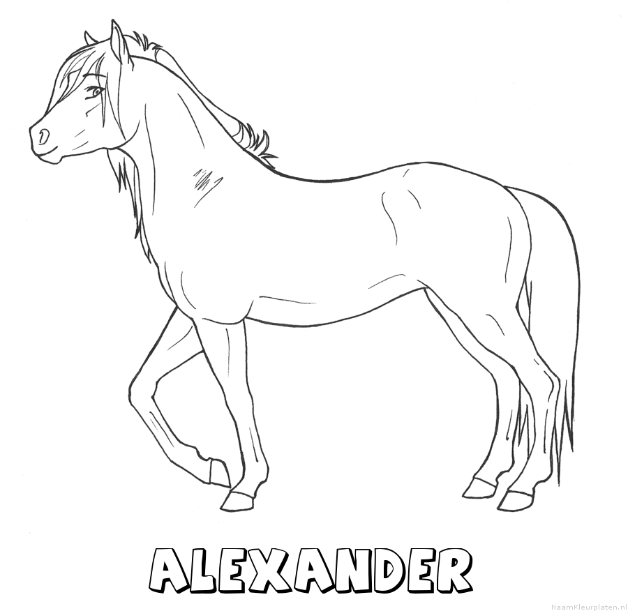 Alexander paard kleurplaat
