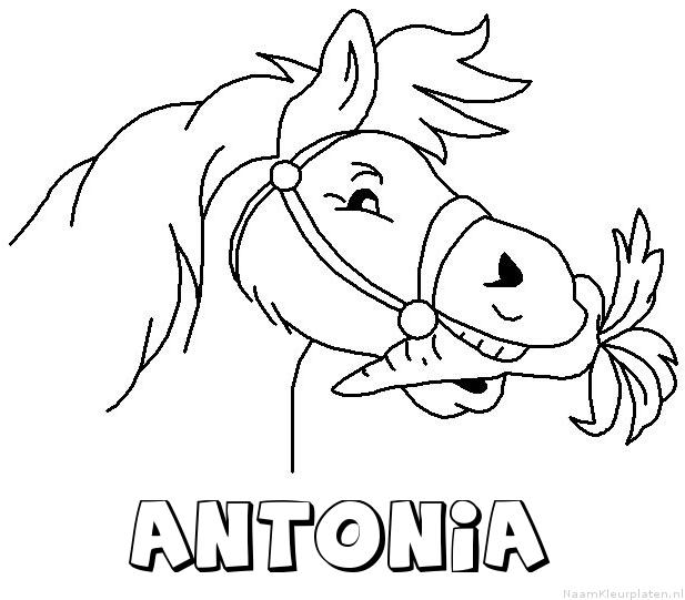 Antonia paard van sinterklaas kleurplaat