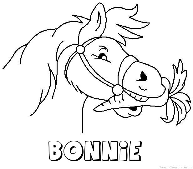 Bonnie paard van sinterklaas kleurplaat