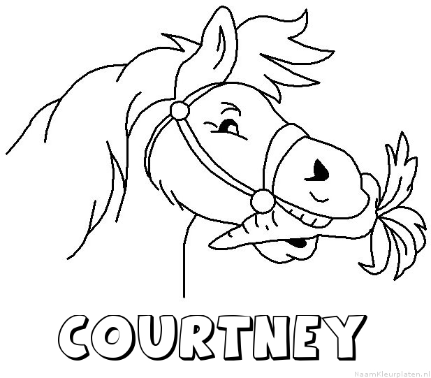 Courtney paard van sinterklaas kleurplaat