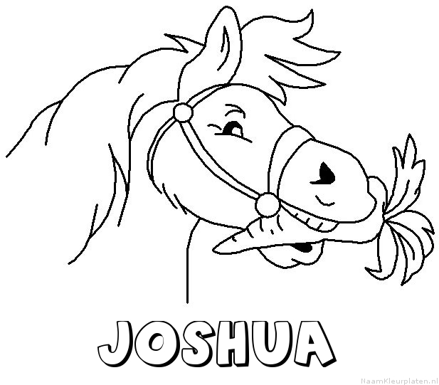 Joshua paard van sinterklaas kleurplaat