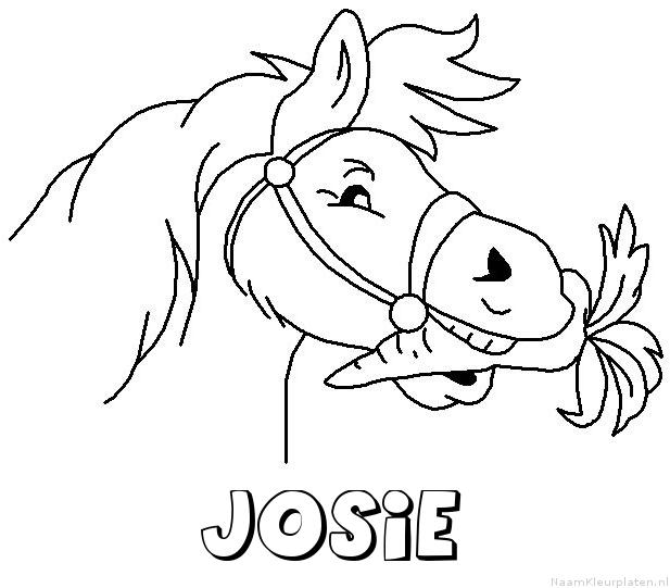 Josie paard van sinterklaas kleurplaat