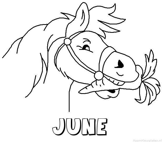 June paard van sinterklaas kleurplaat