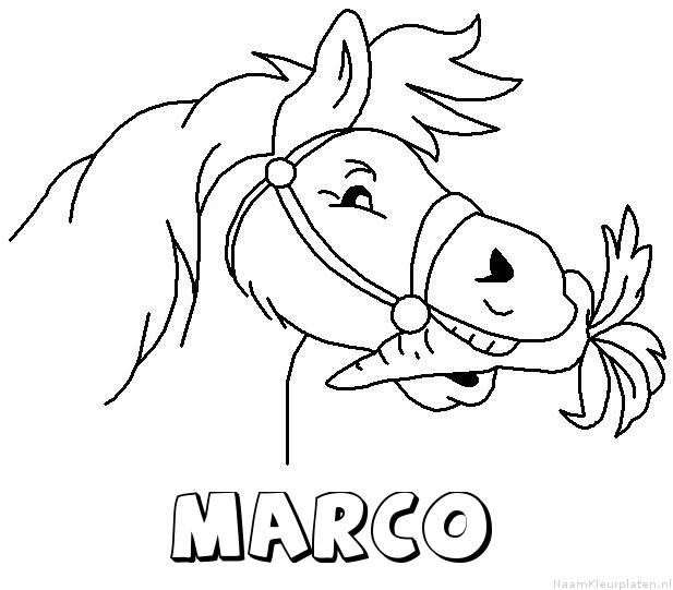 Marco paard van sinterklaas kleurplaat