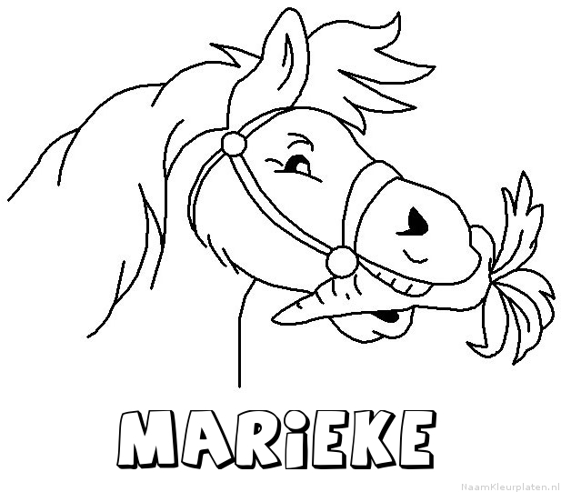 Kleurplaten Van Paarden Afdrukken.Marieke Paard Van Sinterklaas Naam Kleurplaat