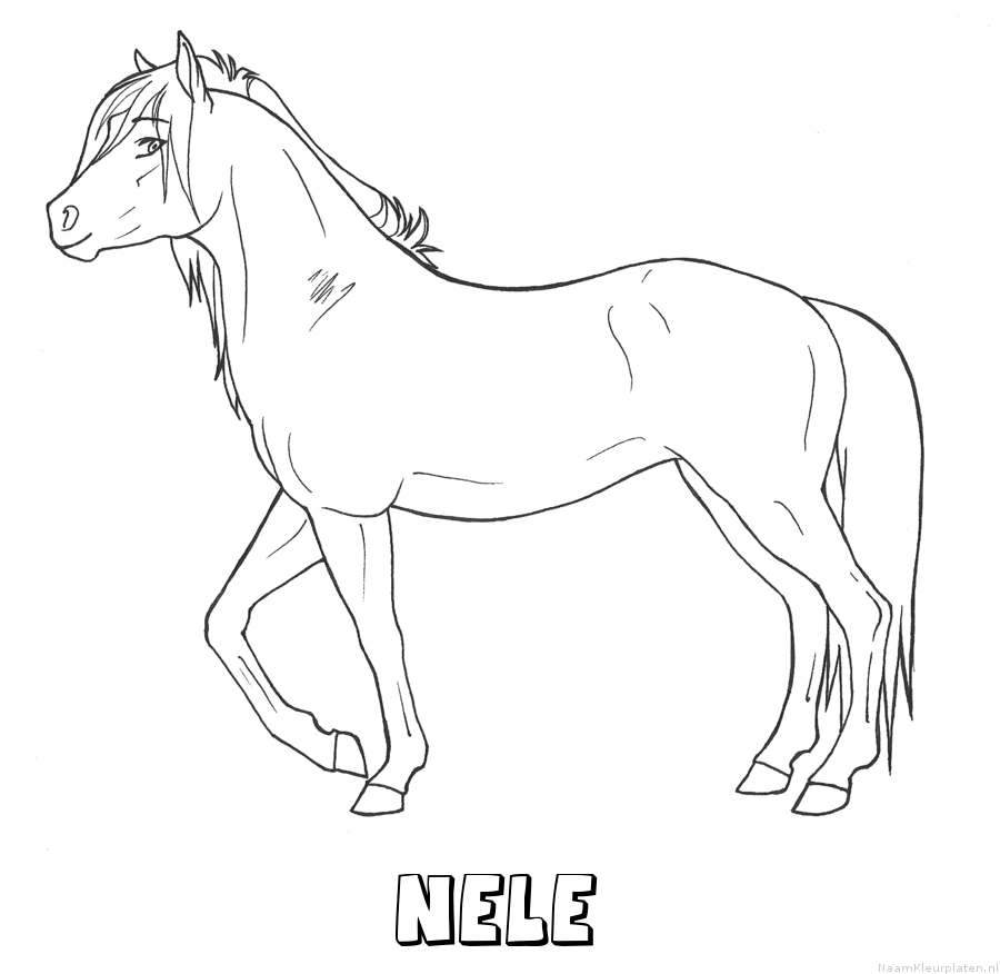 Nele paard kleurplaat