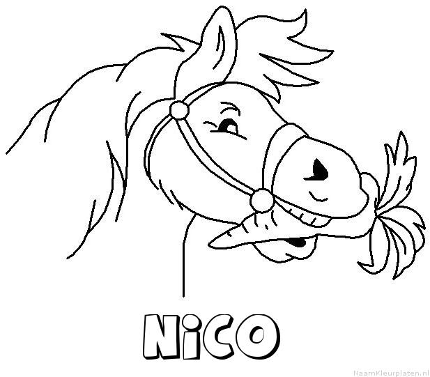 Nico paard van sinterklaas kleurplaat