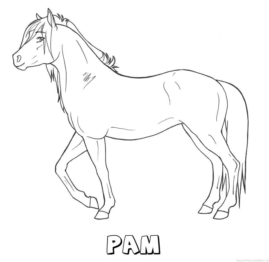 Pam paard kleurplaat