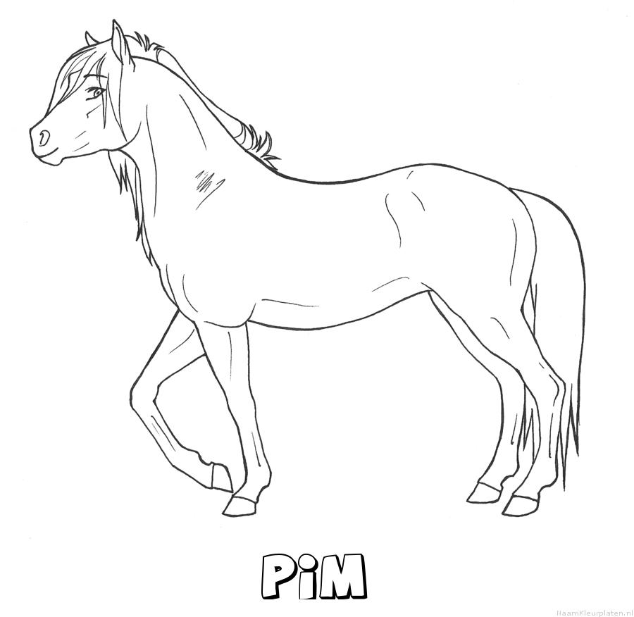 Pim paard kleurplaat