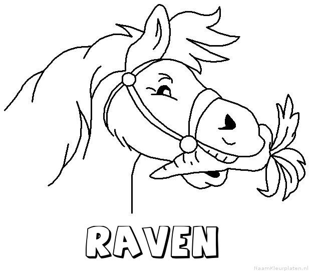 Raven paard van sinterklaas kleurplaat