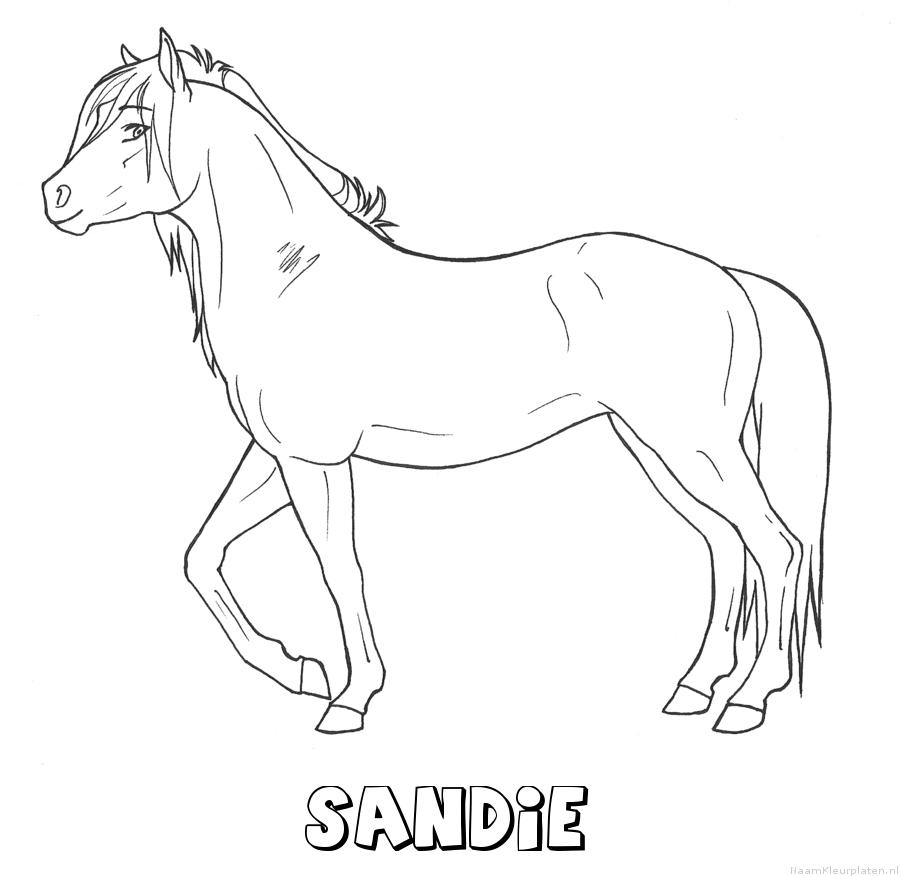Sandie paard kleurplaat