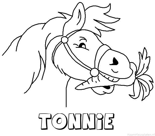 Tonnie paard van sinterklaas kleurplaat